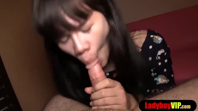 Cute ladyboy with a hairy dick gets bareback fucked picture slut